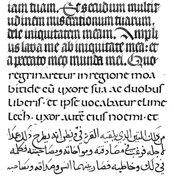 Letter Proportions In Dual Script Fonts Khatt Foundation